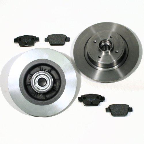 Bremsscheiben/Bremsen mit Radlager + ABS Sensorringe + Bremsbeläge für hinten/die Hinterachse