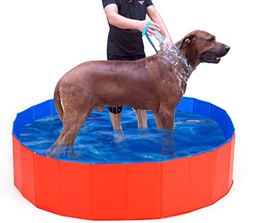 Lumcrissy Foldable PVC Dog Cat Pet Swimming Pool Bathing Tub,Water Pond Pool for Kids,(Extral L)