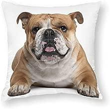 "Wini2342ckey Throw Pillow Covers Lovely British Bulldog Animal Printed DIY Custom-Made Decorative Short Plush Floss Pillowcase Cushion CoversPillow Case Home Bed Decor 18"" x 18"" 45cm x 45cm"