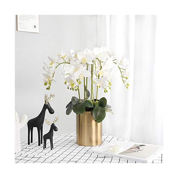 FagusHome 4 Piezas Flores Artificiales Orquídea Phalaenopsis Mariposa 80cm con 2 Piezas Hojas de Orquídea Phalaenopsis…