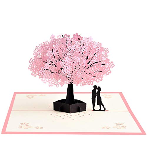 Meihejia Birthday, Anniversary Card for Husband, Wife, Boyfriend, Girlfriend