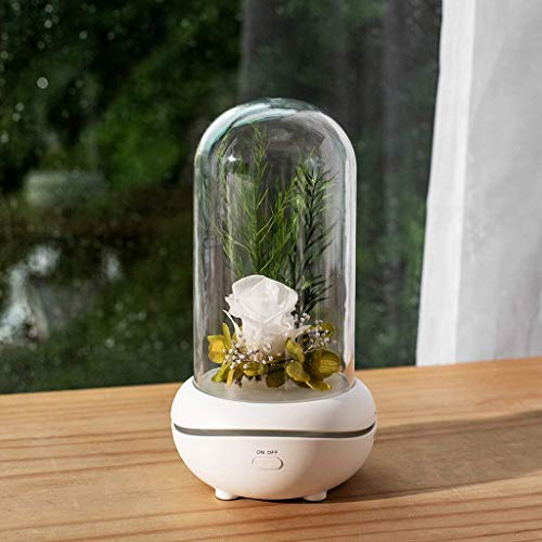 DGHJK Holiday Creative Gift LED USB Romantic Eternal Flower Aroma Lamp Colorful Ambience Lamp Rose Wedding