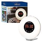 Sveglia WTL analogica Alba con Radio e GUIDATO Illuminazione dell'umore, plastica, 5 Watt, Bianco