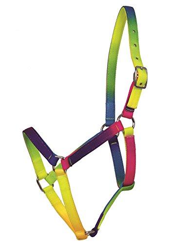Paardensport Amesbichler Waldhausen paarden houder regenboog design, paardenhalter in opvallende heldere neonkleuren, verstelbaar nekstuk