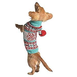 Chilly Dog Sweat à capuche de menthe poivrée