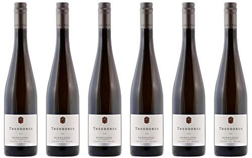 Theodorus Wein- und Sektgut Riesling vom Muschelkalk ** Ortswein Siebeldingen 2019 Feinherb Bio (6 x 0.75 l)