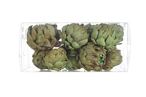 Creative Co-op Boxed (Set of 9 Styles) Dried Artichokes, Green