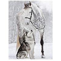 DIYペイント 数字 キャンバス油絵 馬とオオカミ キット 子供&大人用 幅16インチ x 長さ20インチ 絵筆付き アクリル顔料