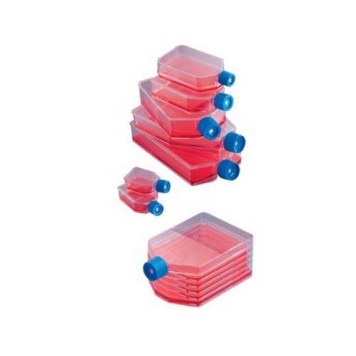 neolab C de 3022zellkulturflaschen, cuello oblicuo, 25ml (100unidades)
