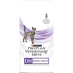 Dental Health Dry Food for Cats