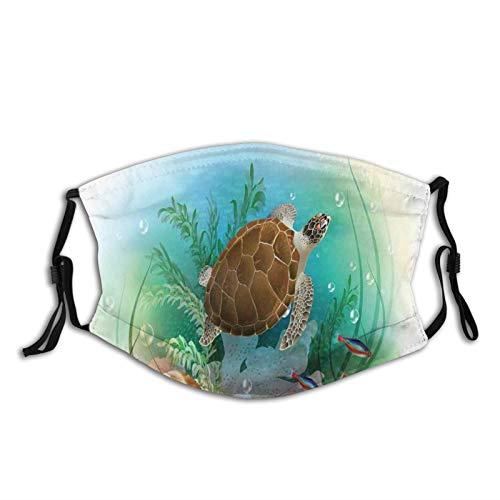 Acuario Para Tortugas  marca ETHAICO