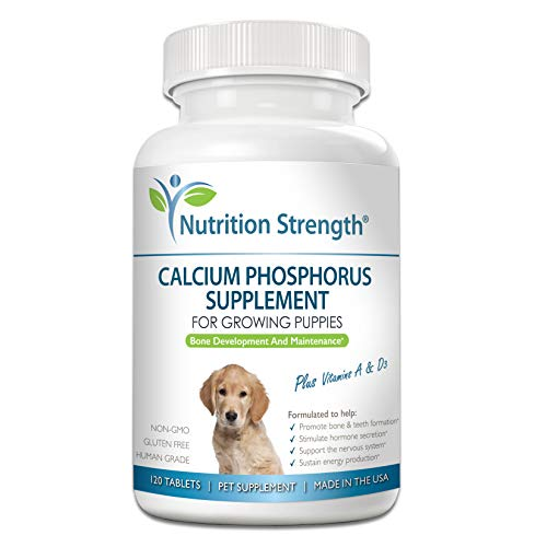 Top 10 best selling list for nutrition supplement for pregnant dog