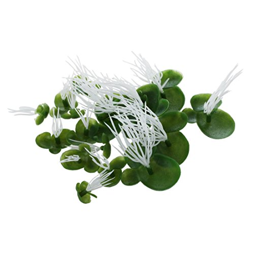 Bigpea Aquarium Artificiel Lenticule Plastique Flottant Vert Blanc Plante