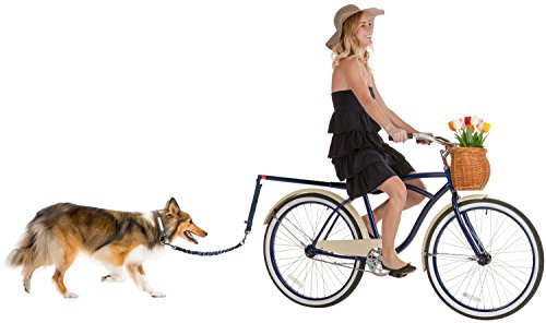 Hands Free Bicycle Dog Leash for Bike Riding Safe with Pets  Soft amp Easy Pull Tug Free Control from Small to Large Dogs
