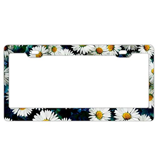 Wildflower Daisy Flower Pattern in A Watercolor Style License Plates Frames Black and White Daisy License Plate Covers Chrome License Plate Frame Tag Holder 2 Holes…