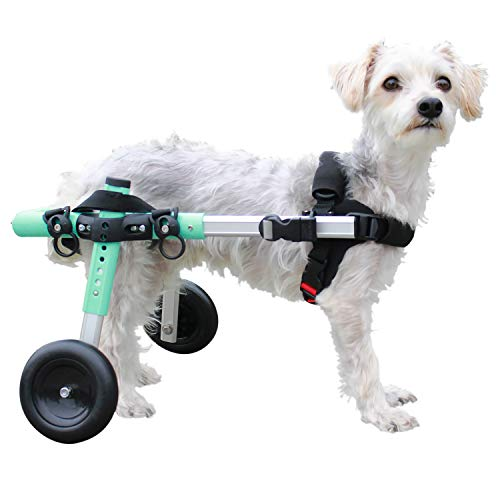 Walkin' Wheels Lightweight - for Small Dogs 11-25 Pounds - Veterinarian Approved - Dog Wheelchair for Back Legs