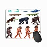 Mouse Pad Colored Isolated Darwin Evolution Icon Set Transition era to era Darwin Evolution Icon Set Rectangle Rubber Mousepad 11.81 X 9.84 Inch