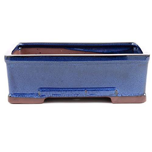 Bonsai 30036 Bol carré Bleu 26,5 x 19 x 9 cm