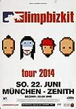 Limp Bizkit - Ready to Go, München 2014 »