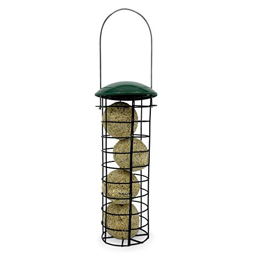 Bird Feeder With 4 Suet Balls Included - Plastic Outdoor Hanging Feeders for Garden Birds Feeding - Attracting Tits, Finches, Robins, Sparrows & many more Wild Birds