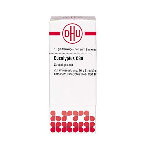 DHU Eucalyptus C30 Streukügelchen, 10 g Globuli