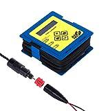 fritec Vario - Dispositivo per la carica e la diagnosi delle batterie da 6 V a 12 V, anche per le batterie agli ioni di litio