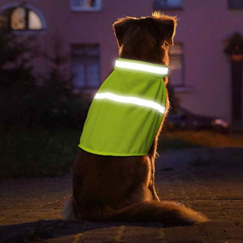 VIZPET Dog Reflective High Visibility Safety Vest for Outdoor Activity Day and Night, Keep Your Dog Visible and Safe (Green, Large)
