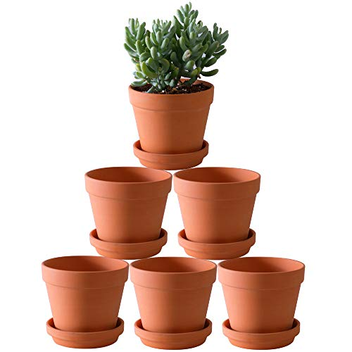 Terra Cotta Pots with Saucer- 6-Pack Large Terracotta Pot Clay Pots 5.5'' Clay...