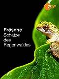 Frösche – Schätze des Regenwaldes
