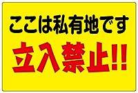 表示看板 「ここは私有地です 立入禁止!!」 反射加工なし 特大サイズ 90cm×135cm VH-186XL