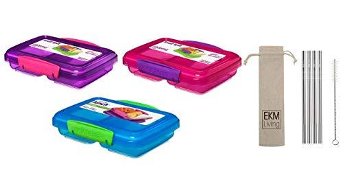 Sistema Lunchbox 3er Set small Split 2fach unterteilt 350 ml pink, blau, lila + Gratis 4er Set EKM Living Edelstahl Trinkhalme