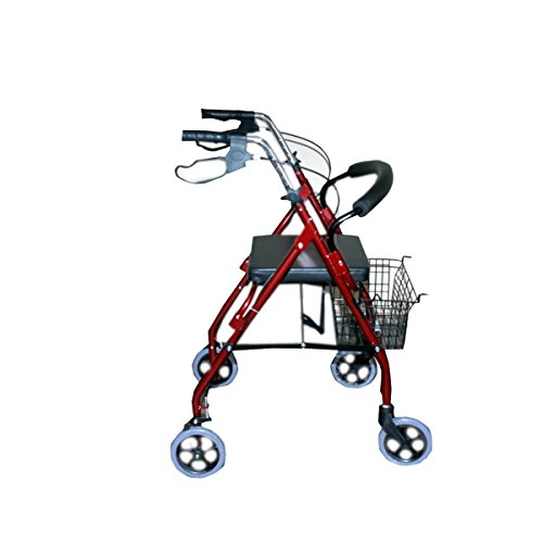 Karma Rollator Walker With Seat