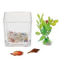 PETSOLA ガラス正方形の花の花瓶ミニ水槽プランターガーデンテラリウムの装飾
