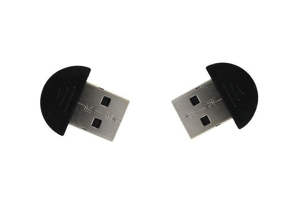 目に見えるリーズ煙突TINY USB 2.0ワイヤレスブルートアダプタードングル(2梱包)