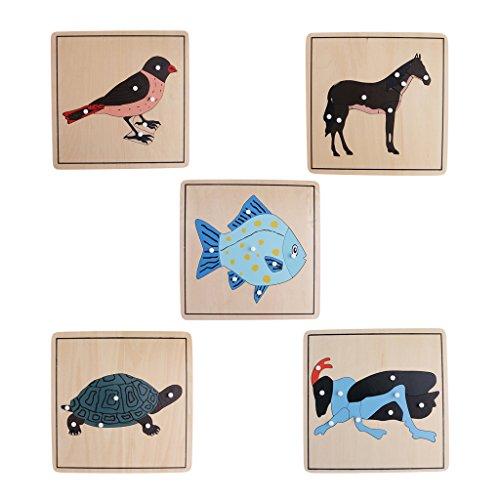 KESOTO 5X Montessori Knob Puzzle Tierkarten Lernkarten Karten Spielzeug Holzspielzeug für Kinder ab 3 Jahre Alt