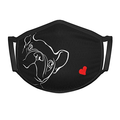 French Bulldog Kids Face Mask Reusable - Breathable Comfort, Mouth Mask, Machine Washable, Face Masks for Children 5-12 - Youth Metallic