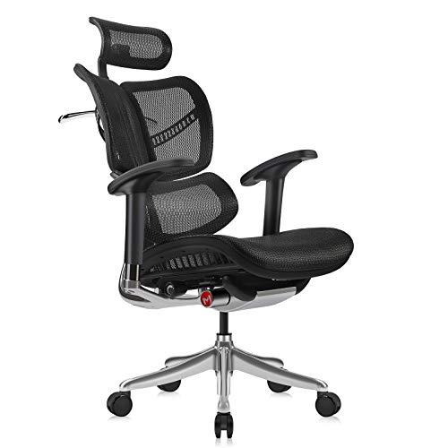 MOOJIRS Ergonomic Office Chair with Headrest Adj and Tilt Limiter Backrest Height Adj Seat Depth Adj 3-Dimensional Dynamic Backrest and Lumbar Support Aluminum Frame/with Standard Carpet Casters