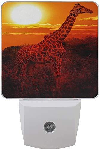 1 paquete salvaje de jirafa puesta de sol con luz de árbol bosque LED, luz nocturna crepúsculo al amanecer, sensor plug in noche, decoración de casa, lámpara de oficina para adulto.