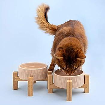 Navaris Lot 2X Bol en Céramique - Gamelle pour Chat Chiot Ø 13 cm avec Support en Bambou - Set 2X Gamelle Surélevée avec Socle - Design Danois