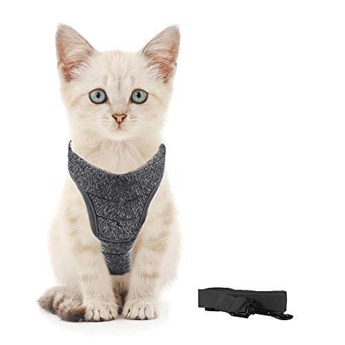 Generic Brands Katzengeschirr mit Leine Ultraleichtes Kitten Collar Coft und bequemes Brustgeschirr für Kätzchen und Kaninchen (S, Schwarz)