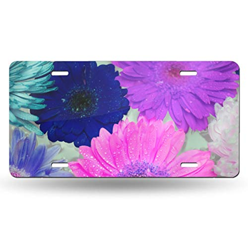 Doinh Nummernschild mit Blumenmotiv, personalisierbar, einseitiger Druck, flach, Aluminium, 30,5 x 15,2 cm