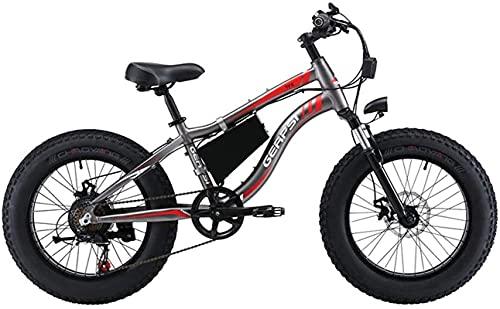 Bicicleta electrica Moto de nieve eléctrica Bicicleta de 20 pulgadas Neumático grande...