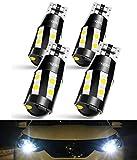 CAR WORK BOX Car Exterior Light Bulbs