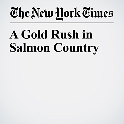 A Gold Rush in Salmon Country copertina