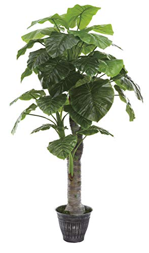 AMERIQUE Gorgeous & Unique 6 Feet Royal Hawaiian Elephant Ear Artificial Plant with Giant Leaves, UV Protection, Feel Real Technology, Green