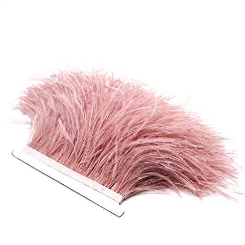 Vejaoo 1M Pluma De Avestruz Teñidas De La Franja para el vestido de costura Crafts Costumes DIY Deco VJ012 (1M Pink)