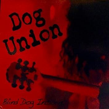 Blind Dog Incident