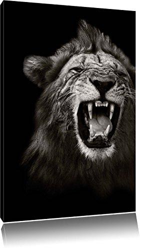 Pixxprint Dark Brüllender Löwe Schwarz/Weiß, Format: 40x60 auf hochkantiges Leinwand