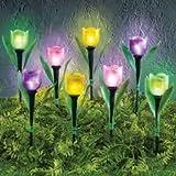 SkyMall Decorative Solar Tulip Stake Lights - Set of 8