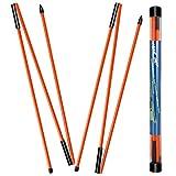 MSOAT - Bastoni per allineamento da golf, confezione da 2 pezzi, 3 sezioni pieghevoli, attrezzi per allenamento da golf, per puntare, putting, swing trainer, spalla, anca e correttore posturale